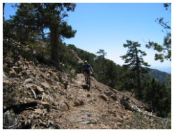 mountain bike atalante trail