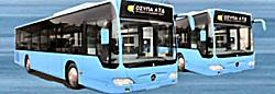 cyprus buses