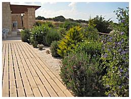 mediterranean garden pictures