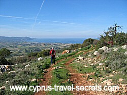 cyprus winteer flights