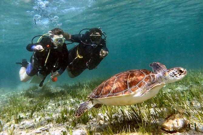 learn to scuba paphos
