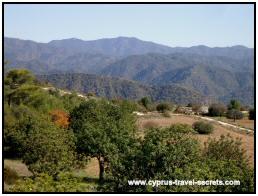 cyprus wine tour