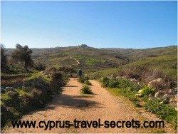 cyprus driving