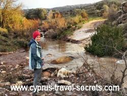 rain damage cyprus