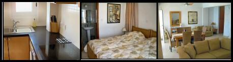 Luxury villa in Drousiea