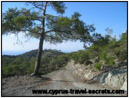 Pictures of Cyprus 16