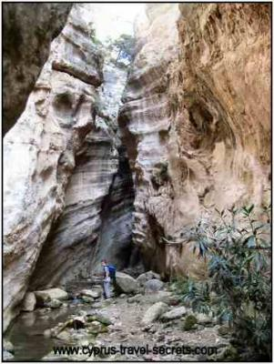Avakas Gorge picture Cyprus