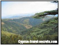 Pictures of cyprus 01