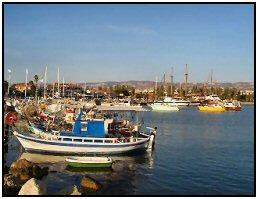 Paphos harbour picture