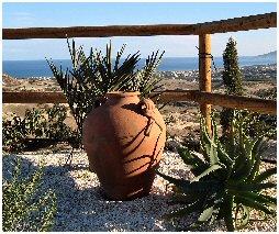 cyprus gardening