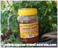 101 things to do - buy Cyprus honey